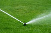 pic of sprinkler  - The lawn sprinkler spraying water in garden - JPG