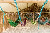 A Basic Hammock Dormitory In The San Blas Islands poster