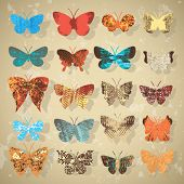 Set of butterflies with different texture