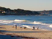 Beach Gathering