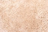 The Texture Of The Light Beige Carpet Is A Synthetic Carpet. Texture Closeup. Useful Background Text poster