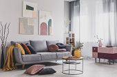 Real Photo Of Abstract Paintings Hanging On White Wall Above A Gray Sofa In A Living Room Interior W poster