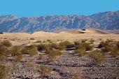 Death Valley Sand Dunes, Death Valley National Park poster