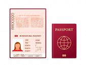 Blank Open Passport Template. International Passport With Sample Personal Data Page. Vector Stock Il poster