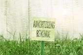 Writing Note Showing Advertising Revenue. Business Photo Showcasing Money Media Earn From Selling Ad poster