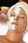 Spa Organic Facial Mask Applied By Esthetician