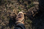 Keeping Feet Comfortable On Long Walks. Leather Shoe Or Footwear Outdoor. Male Shoe Or Boot Standing poster