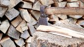 Chipped Firewood For The Winter For Heating. The Ax Is Stabbed With A Blade Into The Stump. Cleaver  poster