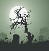 Halloween Spooky Dead Tree In Graveyard