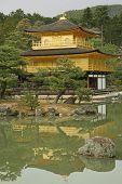 Kinkakuji Temple in Kyoto, vertical