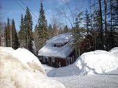 Home hidden in snow