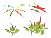 Set Of Red And Green Chili Peppers