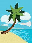 Cartoon Beach With Palm