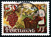 Postage Stamp Portugal 1970 Grapes And Woman Filling Baskets