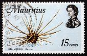 Postage Stamp Mauritius 1969 Sea Urchin