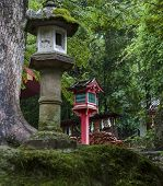 Stone And Wooden Lanterns Near Kasuga Taisha Shrine  In Nara, Japan.