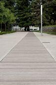 Wood path way
