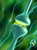 pic of human body  - Activated chemical synapses in human brain - JPG