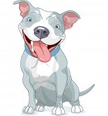 Illustration of Cute Pit Bull Dog