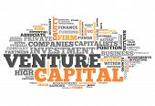 Word Cloud Venture Capital