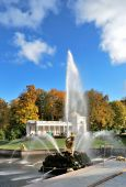 stock photo of samson  - Peterhof - JPG