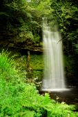 Waterfall With Green Treees