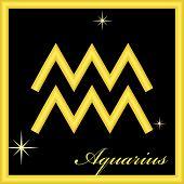 signo del zodiaco - acuario
