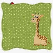 Greeting Card With Giraffe