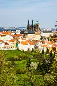 Prague with St. Vitus Cathedral