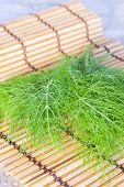 A green dill on bamboo