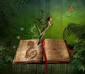 picture of fairies  - a fairy girl flying and a book in the forest - JPG