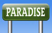paradise road way to heaven