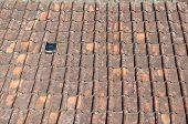 Mildewed Terracotta Roof Tile
