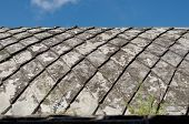 picture of sari  - concrete roof at taman sari water castle  - JPG