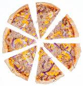 Tuna Pizza (over White)