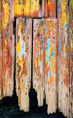 Detail of an old wooden door with peeling paint and rusty nails