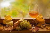 Autumn White Wine