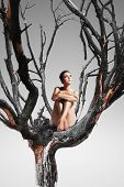 Pretty Woman Sitting On Tree