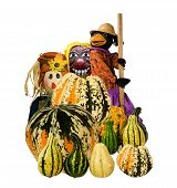 Halloween-Harvest decoration