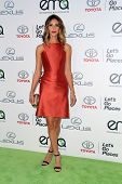 LOS ANGELES - OCT 18:  Dawn Olivieri at the 2014 Environmental Media Awards at Warner Brothers Studios on October 18, 2014 in Burbank, CA