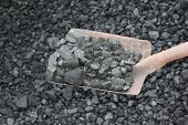Coal With Shovel