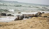 waves hitting the rocky shorelines