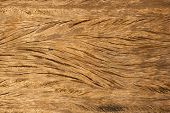 Natural wooden texture background.