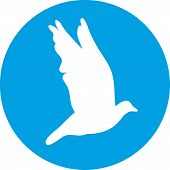 Dove For Peace Concept And Wedding Design. Flying Dove White Silhouette On A Blue Background.