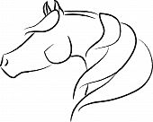 picture of horse head  - Artistic - JPG
