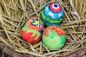 picture of dry grass  - Easter Eggs With Bright Drawing In A Nest From A Dry Grass - JPG
