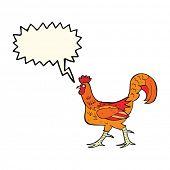 pic of cockerels  - cartoon cockerel with speech bubble - JPG
