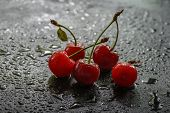 picture of berries  - Wet in the rain the pavement were five bright red berries cherries - JPG