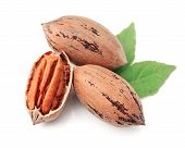 stock photo of pecan nut  - Pecan nuts with leaves close up on white background - JPG