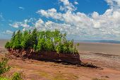 picture of tide  - View at Burncoat Head Park on the Bay of Fundy in Nova Scotia - JPG